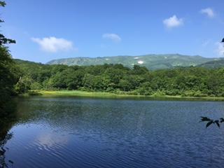 何と綺麗なことでしょう。上沼と奥に見える山には残雪を眺めることができました。